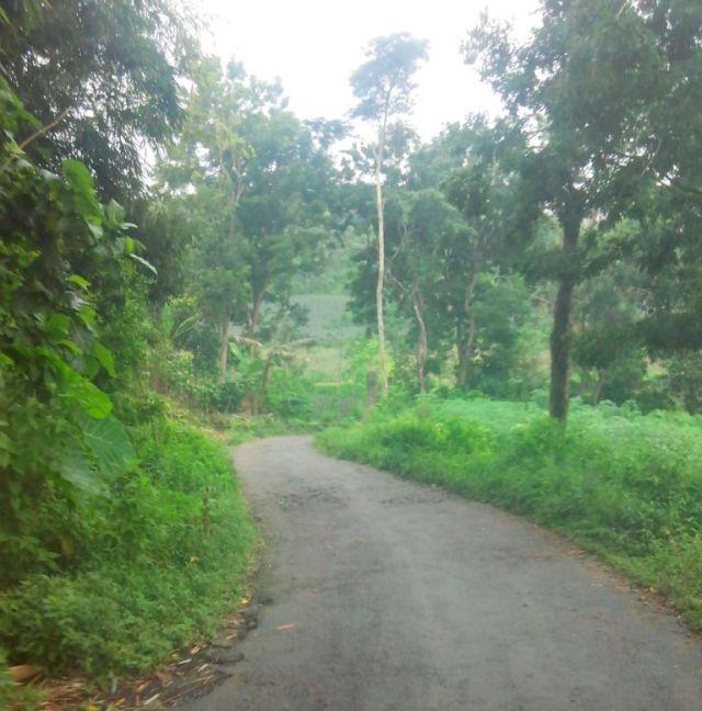 jalan sepawon ke sugihwaras
