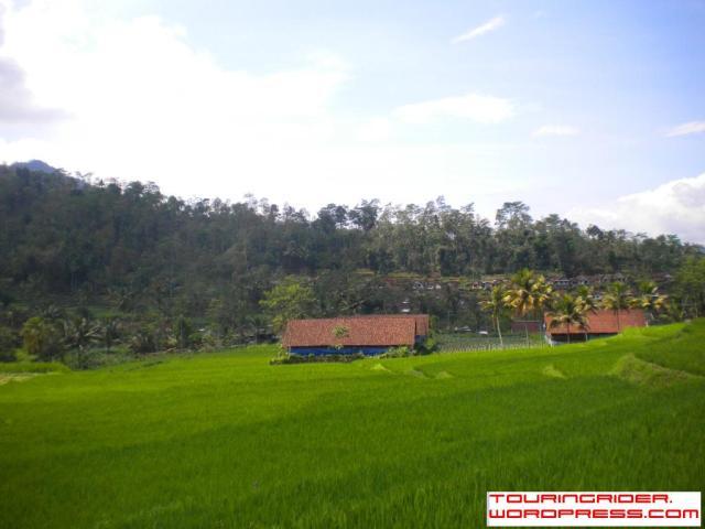 Desa Tulungrejo, Ngantang